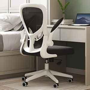Hbada Office Chair, Ergonomic Desk Chair, Computer Mesh Chair with Lumbar Support